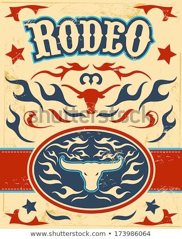 Color vintage wild west emblem Stock photo © netkov1