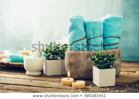 spa products in natural setting stock photo © mythja