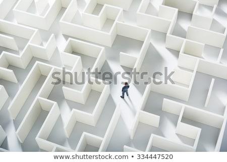 Zakenman permanente top doolhof naar business Stockfoto © ra2studio