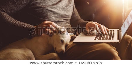 Photo of male freelancer works remotely at computer with dog, his affectionate wife embraces and hel Stock photo © vkstudio