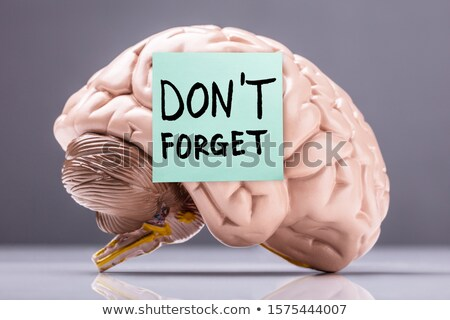 Sticky Note With Don't Forget Text On Brain Over Desk Stock photo © AndreyPopov