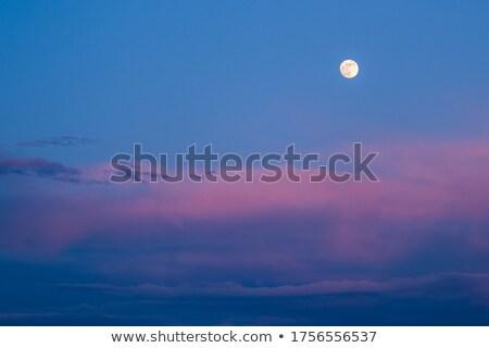 Hermosa luna anochecer paisaje formato azul Foto stock © oksanika
