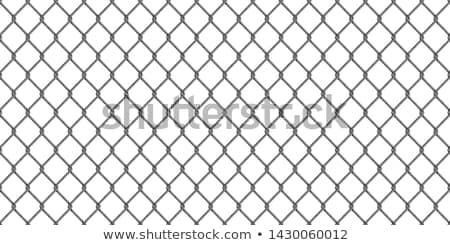 Grande realista escuro cinza metal cadeia Foto stock © evgeny89