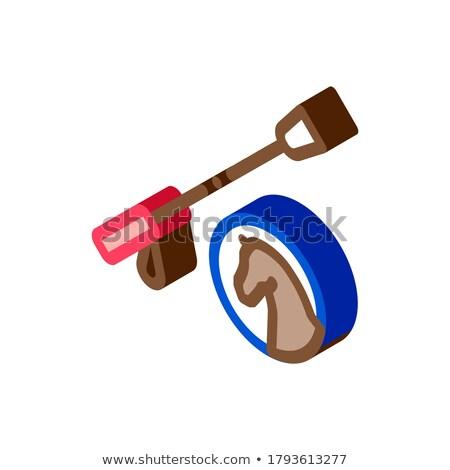 Caballo látigo herramienta icono vector Foto stock © pikepicture