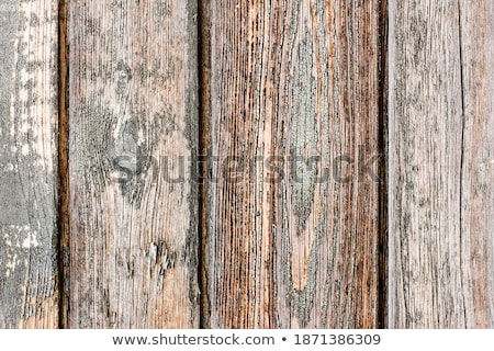Wood constructed wall of an rural old style cabin stock photo © flariv