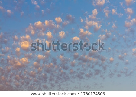 Altocumulus Clouds Stock photo © sbonk