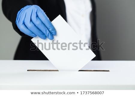 Estados · Unidos · eleição · votar · botão · vetor · azul - foto stock © experimental