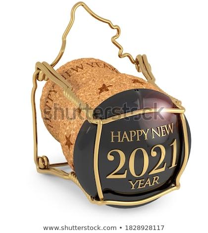 Invierno nuevos año CAP buena suerte Foto stock © karelin721