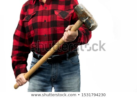 Man in plaid shirt holding heavy hammer Stock photo © photography33