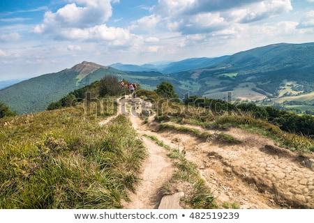 Rock · sentier · montagnes · Pologne · herbe · forêt - photo stock © janhetman