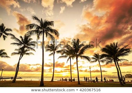 Waikiki tengerpart naplemente arany híres utazás Stock fotó © HerrBullermann