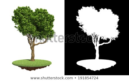 Isolated Green Tree on Grass with Detail Raster Mask. Stock photo © tashatuvango