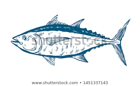 Kırmızı ton balığı parça pazar akdeniz gıda Stok fotoğraf © Photooiasson