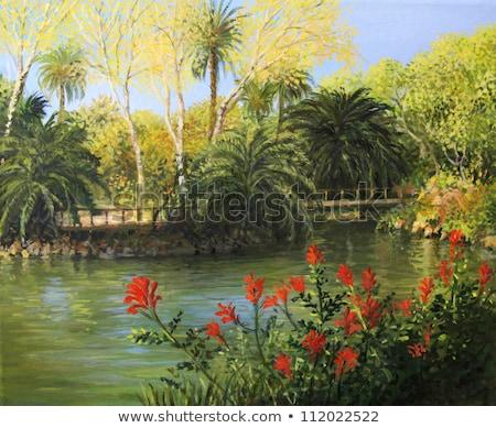 Foto stock: Espanhol · flores · foto · tarde · verão · tempo