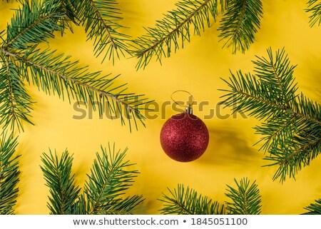 Рождества · границе · красный · украшения · соснового - Сток-фото © feelphotoart