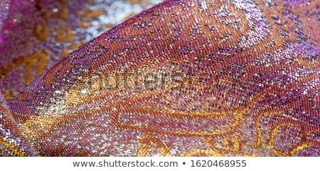 brocade fabric detail  Stock photo © Sarkao