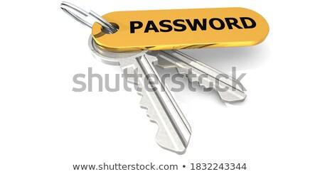 Kulcsok szó jelszó arany címke fekete Stock fotó © tashatuvango