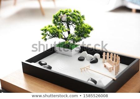 mini · zen · jardín · resumen · arena · piedra - foto stock © joannawnuk