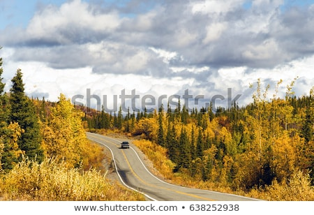 Fall Color Autumn Landscape Alaska Two Lane Road Highway Stock photo © cboswell