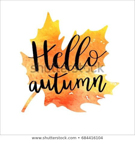 Hello jesienią liścia kubek kawy tytuł Zdjęcia stock © olgaaltunina