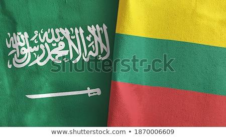 Arabia Saudita Lituania bandiere puzzle isolato bianco Foto d'archivio © Istanbul2009