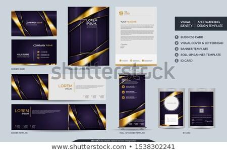 Ingesteld luxe Blauw brochure visitekaartje sjablonen Stockfoto © liliwhite