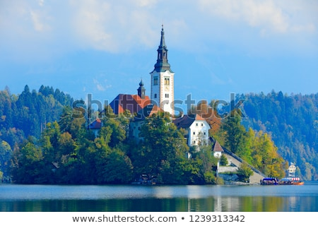 church and bled castle on bled lake in slovenia at night stock photo © kayco