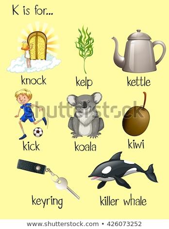 Flashcard alphabet K is for knock Stock photo © bluering