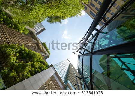 A tall green building Stock photo © bluering