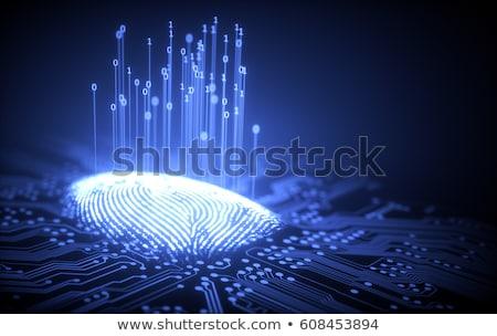 ujjlenyomat · bináris · mikrocsip · 3d · illusztráció · integrált · nyomtatott - stock fotó © idesign