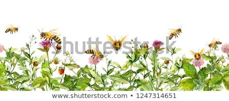 bee with pink ribbon Stock photo © adrenalina