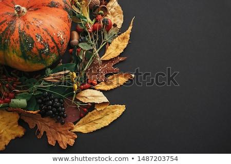 Autumn decorations background Stock photo © Lana_M