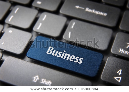 Business Consultant Keypad. Stock photo © tashatuvango