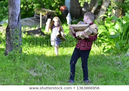 lány · hordoz · tűzifa · vidéki · lány · vidék · gyermek - stock fotó © is2