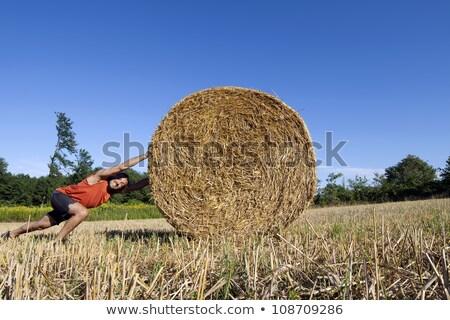 Férfi toló széna bála természet farm Stock fotó © IS2