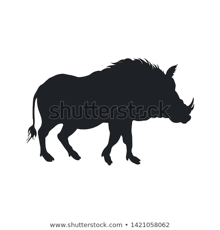 Warthog Wild boar isolated. African pig. Wild animal on white ba Stock photo © popaukropa