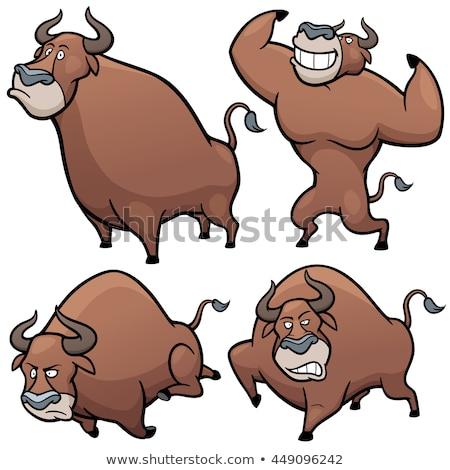 Rajz torreádor bika illusztráció mérges fölött Stock fotó © tiKkraf69