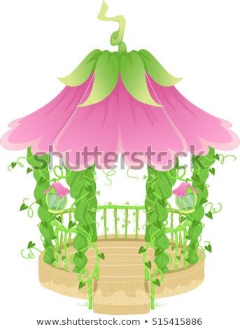 Fancy Flower Vine Gazebo Stock photo © lenm