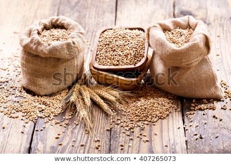 мешок зерна пшеницы ушки здоровья фон хлеб Сток-фото © Alexan66