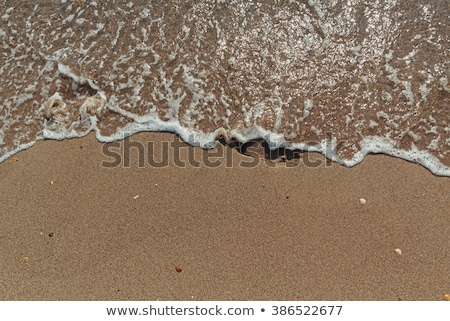 empreintes · sable · eau · mer · vague · pied - photo stock © lovleah