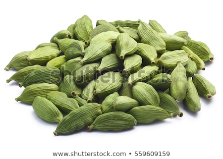 yeşil · kakule · baharat · yalıtılmış · beyaz · yüz - stok fotoğraf © karandaev