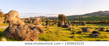 Wyangala rural landscape Panorama Stock photo © lovleah