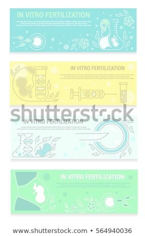 Set orizzontale artificiale maternità simboli Foto d'archivio © netkov1