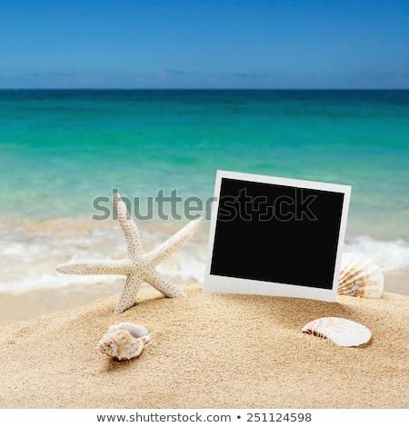 Travel vacation photo frames on beach sand stock photo © karandaev