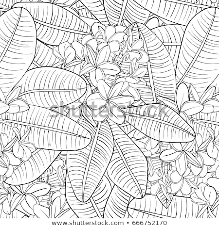 Floral leaves seamless pattern with colorful butterflies on white background Stock photo © Natalia_1947