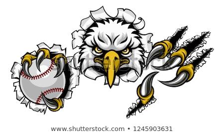 baseball ball eagle claw talons ripping background stock photo © krisdog