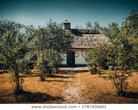 Campesino casa invierno árbol madera Foto stock © fanfo