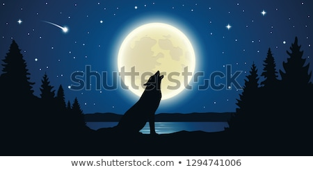 Luna lago ilustración cielo árbol Foto stock © colematt