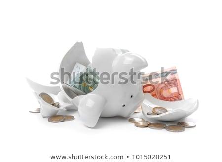 broken piggy bank and euro coins Stock photo © nito