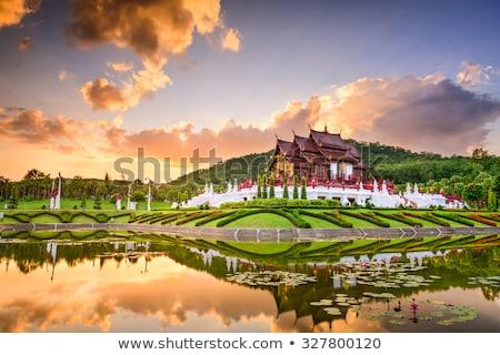 Királyi park Thaiföld nyár nap virág Stock fotó © bloodua